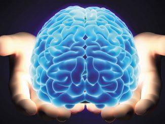 Beynimizle ilgili efsaneler ve gerçekler